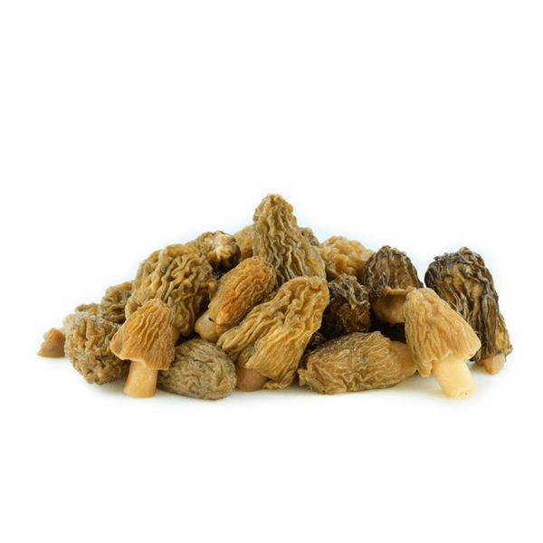 Morchelle secche
