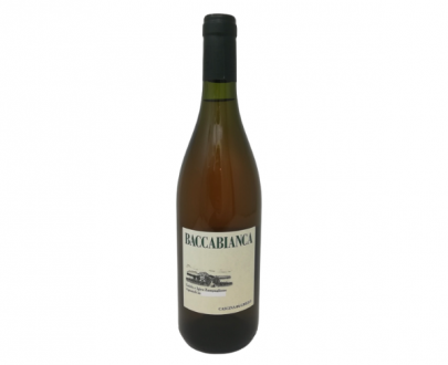 vino bianco baccabianca