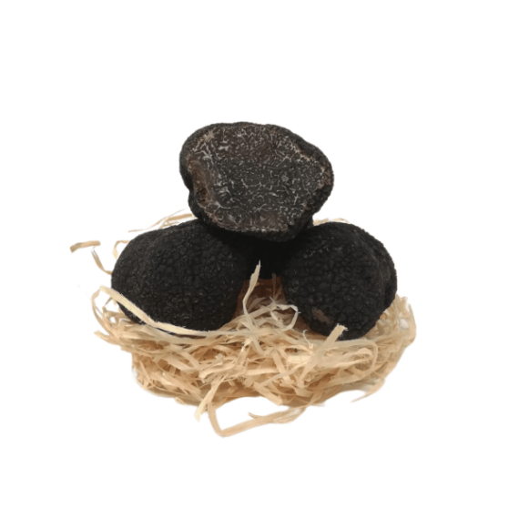 tartufo nero pregiato