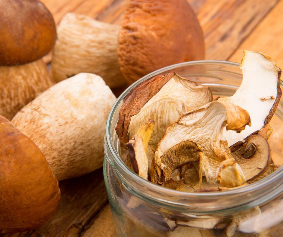 Funghi porcini secchi: i consigli in cucina