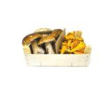 porcini finferli freschi